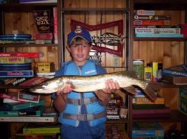 Need a minnesota fishing license click here for Mn fishing license online